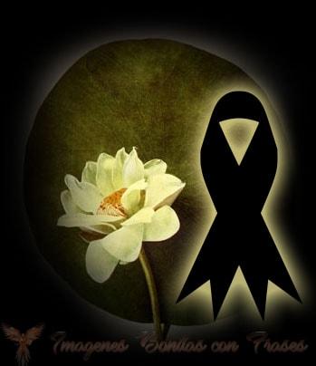 moños  de luto con rosas