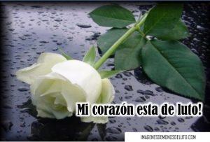imágenes de moños de luto con rosas blancas