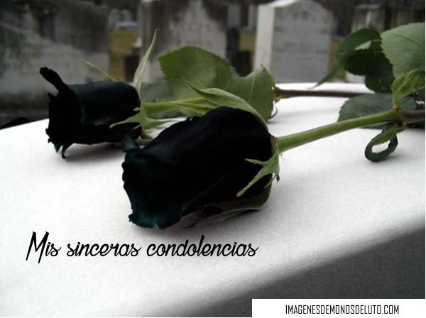 imágenes de rosas negras naturales