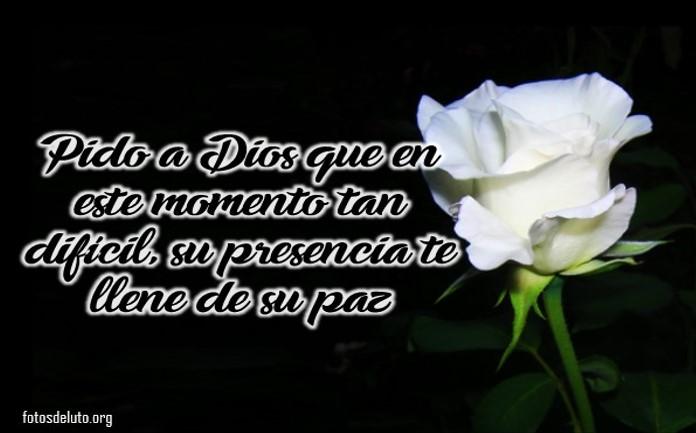 Rosas blancas con frases de luto para compartir