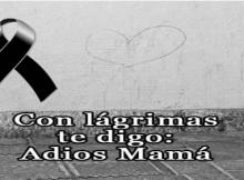 Imágenes de moños de luto para una madre