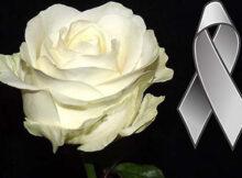 Moños de luto con una rosa blanca para compartir