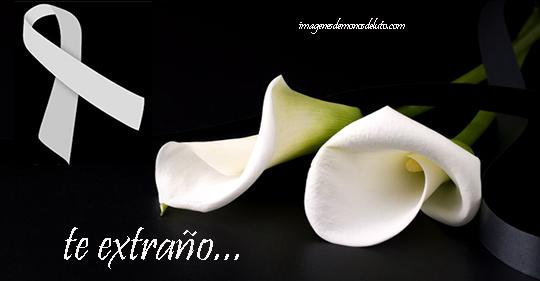 imagenes de moños de luto blancos flores