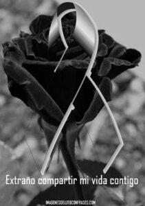 lazo de luto con rosa